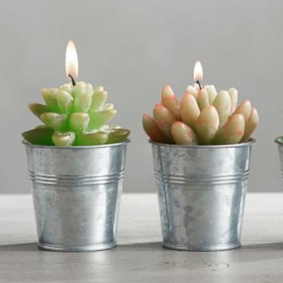 ***SOLD***Pottery Barn succulent candle set